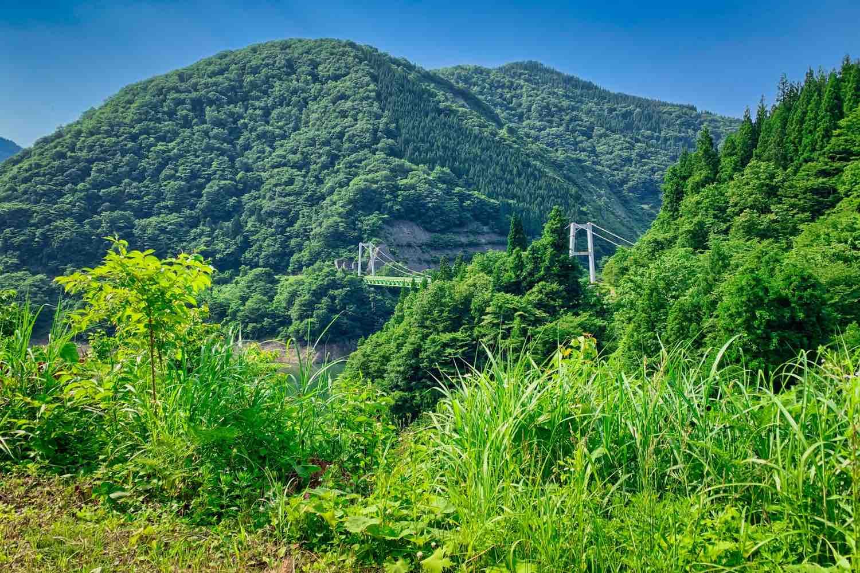 日の谷坑口から見える若生子大橋